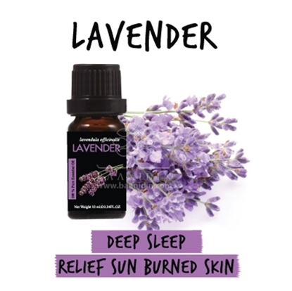 Picture of Baanidin Lavender Essential Oil (10 ml )
