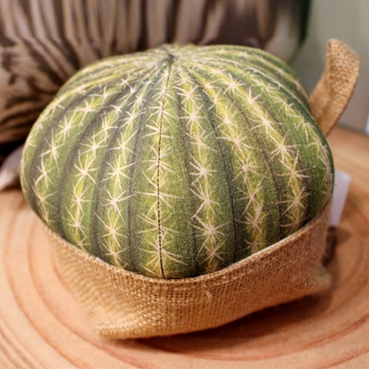 Picture of Grusonii cactus pillow with Sack (Size M)