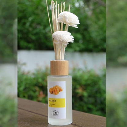 Picture of Botanical Reed diffuser set 100 ml.