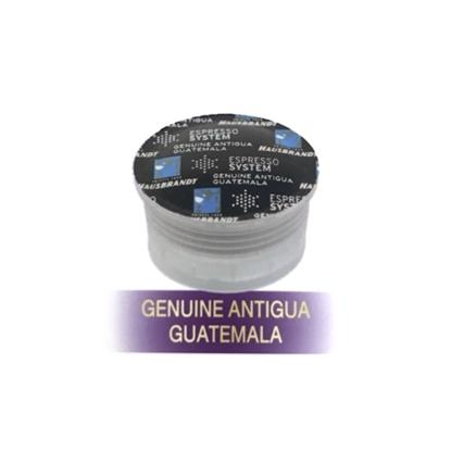 Picture of HAUSBRANDT - GUATEMALA ALTHEA (10 Capsules)