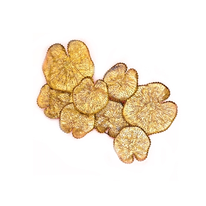 Picture of Giant gold lotus leaf Wall art Home decor