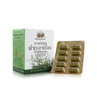Picture of Fa Ta Lai Jone capsules blister pack (400 mg. 60 capsules)