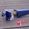 Picture of ดอกกุหลาบ วาเลนไทน์