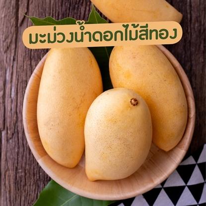 Picture of Golden Mango 5 kg.  Sweet Yellow Mango, Export Grade (Pre Order)