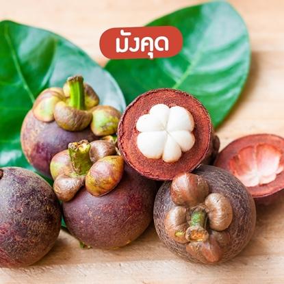 Picture of Premium Mangosteen 2 kg. Thai Mangosteen (Pre-Order)