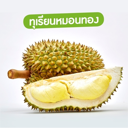 Picture of Monthong Durian 1 kg. Thai Durian Export Quality (Pre-Order)