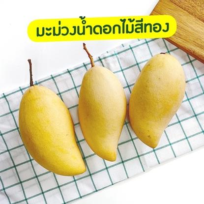 Picture of Golden Mango 4 kg.  Sweet Yellow Mango,  Nam Dok Mai Mango (Pre Order)