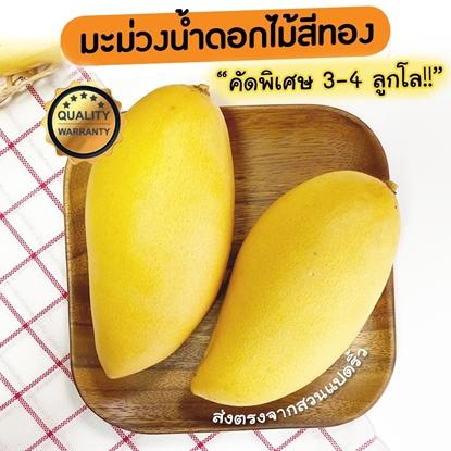 Picture of Golden Mango 5 kg.  Premium Sweet Yellow Mango,  Nam Dok Mai Mango (Pre Order)
