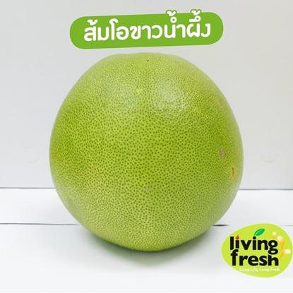 Picture of ส้มโอ (ขาวน้ำผึ้ง)  10 กก. ส้มโอคัดพิเศษ ลูกใหญ่ รสชาติหวานอมเปรี้ยว