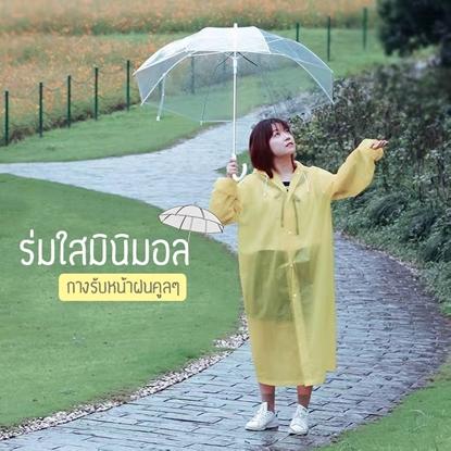 Picture of ร่มใส รุ่นใหม่!! ร่มสไตล์เกาหลี ร่มกันฝน ร่มใสกันฝน ร่มใสมินิมอล ร่มสีใส