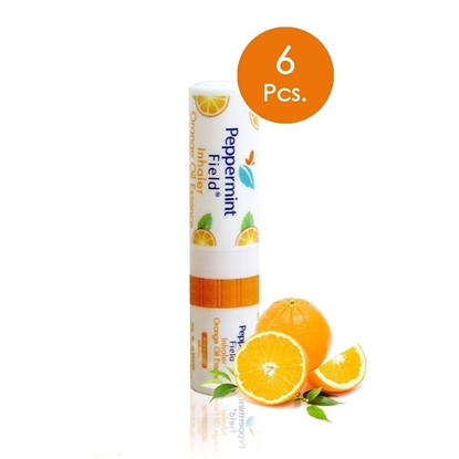 Picture of (6 Pcs.) Peppermint field Inhaler Orange Scent (2 cc)