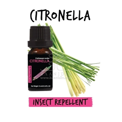 Picture of Baanidin Citronella Essential Oil (10ml)