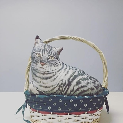 Picture of American shorthair Cat pillow