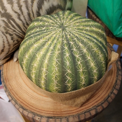 Picture of Grusonii cactus pillow with Sack (Size L)