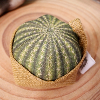 Picture of Grusonii cactus pillow with Sack(Size S)