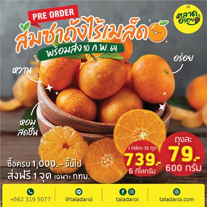 Picture of ส้มซาถังไร้เมล็ด จิ๋วแต่แจ๋ว หวาน อร่อย   6 กิโลกรัม