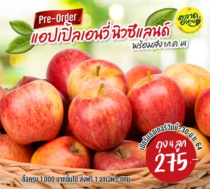 Picture of แอปเปิ้ลเอนวี่ นิวซีแลนด์   เนื้อแน่น หวาน กรอบ ผิวสวย  ( 1 ลูก)
